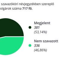 924. A 2019. évi európai parlamenti választás helyi eredménye