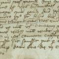 900. Egy Szenttamáson kelt oklevél 1450-ből