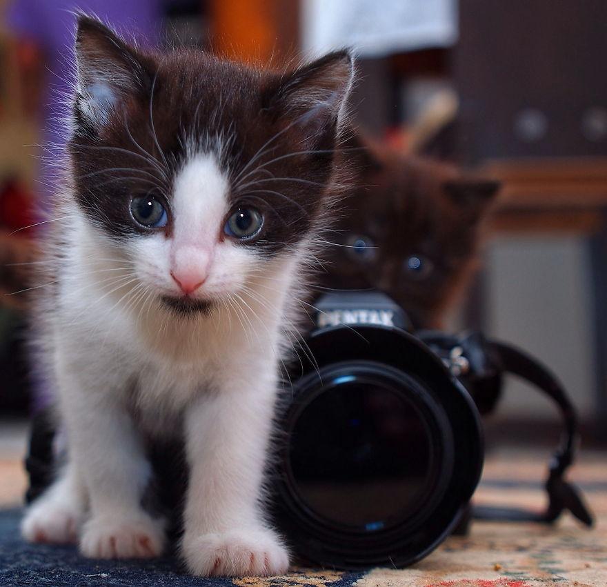 Miért nem fotózol?
