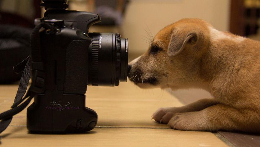 Most akkor le fogsz fényképezni?