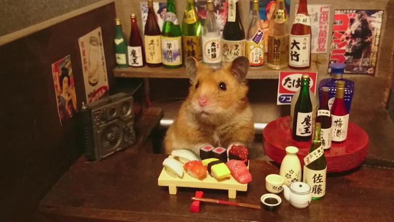 hamster-shopkeepers-3.jpg