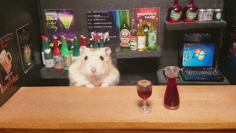 hamster-shopkeepers-running-restaurants-and-bars10.jpg