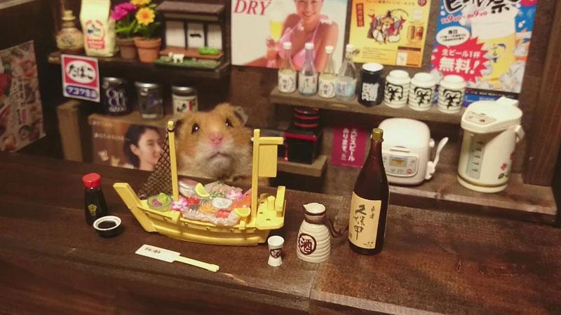 hamster-shopkeepers-running-restaurants-and-bars12.jpg
