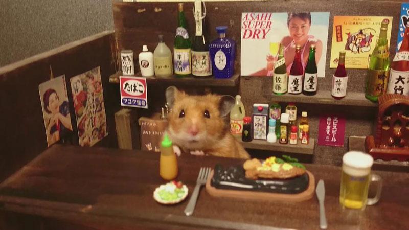 hamster-shopkeepers-running-restaurants-and-bars15.jpg