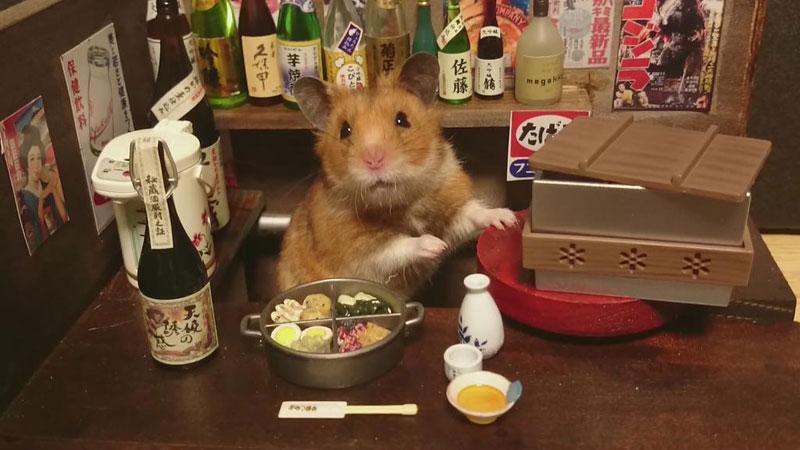hamster-shopkeepers-running-restaurants-and-bars16.jpg