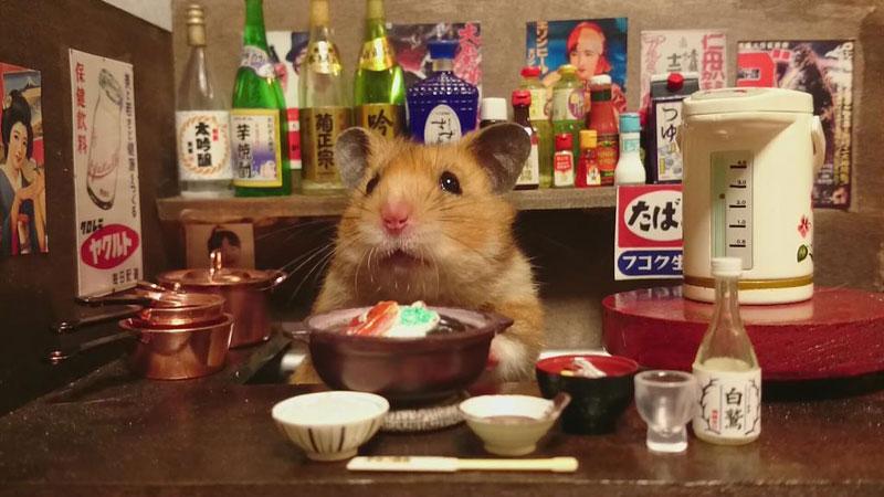 hamster-shopkeepers-running-restaurants-and-bars18.jpg