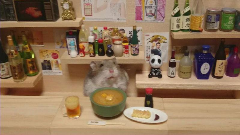 hamster-shopkeepers-running-restaurants-and-bars19.jpg