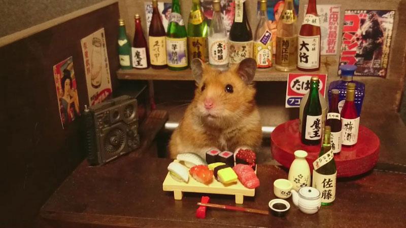 hamster-shopkeepers-running-restaurants-and-bars2.jpg