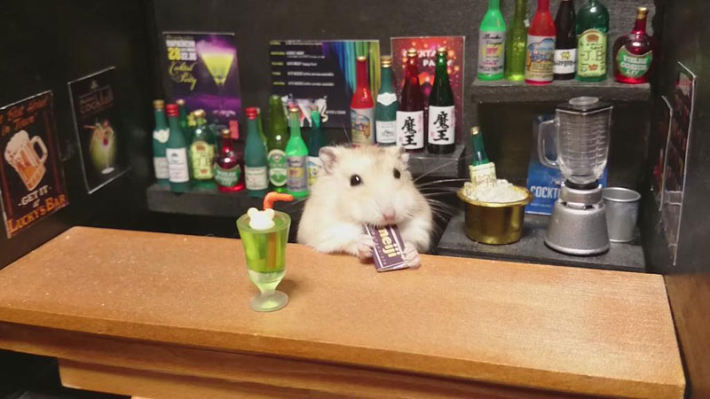 hamster-shopkeepers-running-restaurants-and-bars20.jpg