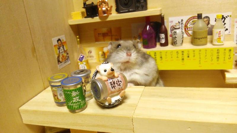 hamster-shopkeepers-running-restaurants-and-bars4.jpg