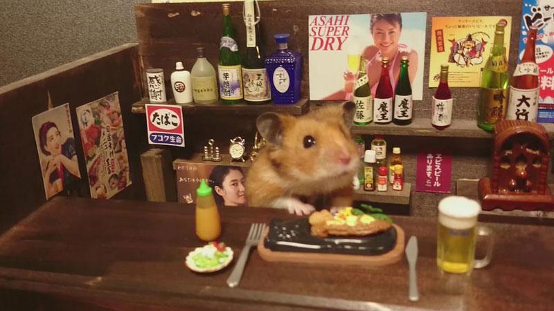 hamster-shopkeepers-running-restaurants-and-bars6.jpg