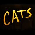 Mindenki meglepődött a Macskák előzetese láttán