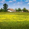 Egyre többen választják a vidéki életet