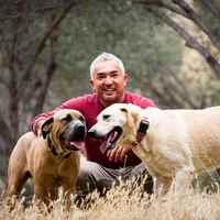 Hazánkba látogat a híres amerikai kutyaguru