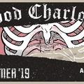 Új albumának turnéjával érkezik a Budapest Parkba a Good Charlotte!