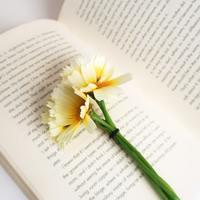 Tavaszi újdonságok a 21. Század Kiadótól