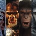 Kult: A Majmok bolygója filmek - retrospektív