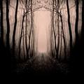 Az ösvény menti gyilkos