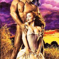 8 giccses romantikus könyvborító újraértelmezése