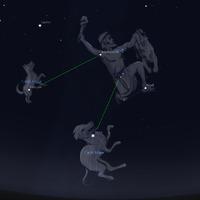 Orion vadászkutyái