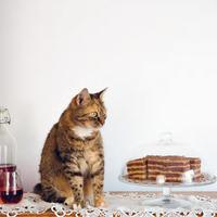 Házi sütemények - ahogy anyukánk készíti