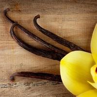 Az isteni fűszer: a vanília