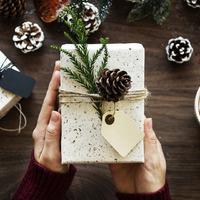 Könyvötletek a karácsonyfa alá