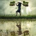 Éhezés és kiszolgáltatottság egy kegyetlen világban