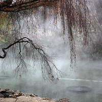 Az esti ködök kertje