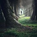 Út a Fénybe, amely inkább a sötétséget jelenti...