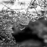 Tényleg csökken az erőszak a világban?