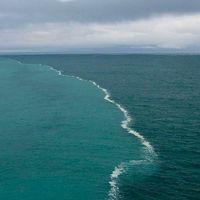 Alaszkai-öböl, ahol két óceán találkozik, de nem keverednek össze. Igaz vagy hamis?