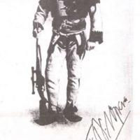 Sárkányok magyar királya
