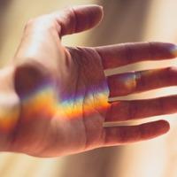 Minden, amit tudni szeretnél a kezedről és annál is több