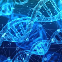 Neandervölgyi génjeink