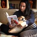 Egy mentett kutyus igaz története a boldog otthonig