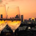 Bortúrák ínyenceknek Bordeaux-tól Tokajig
