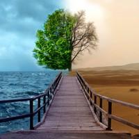 Klímaváltozás - Pánik és tagadás között