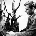 Utazások a világ túlsó felére David Attenborough-val