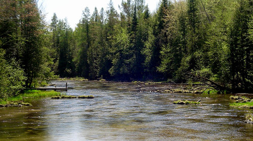 northern_michigan_riverfront_property_pine_river.jpg
