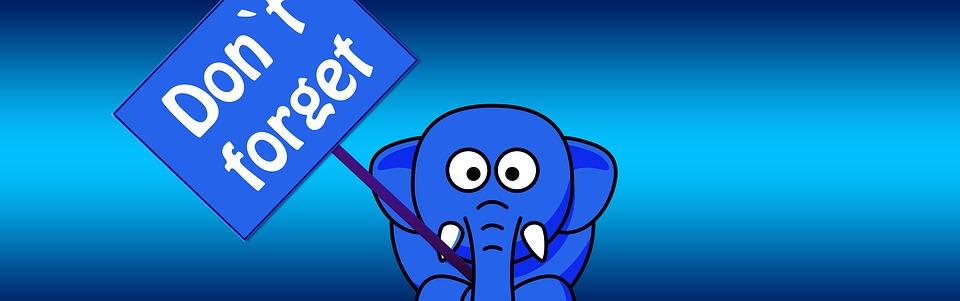 elephant-1090834_960_720.jpg