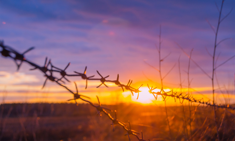featured_art_istock_barbed_wire.jpg