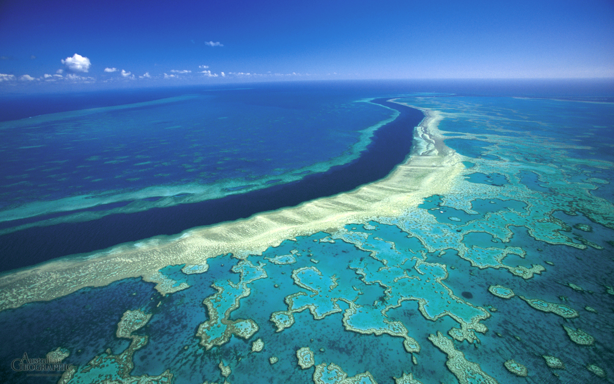 great-barrier-reef-aerial-view-from-top.jpg
