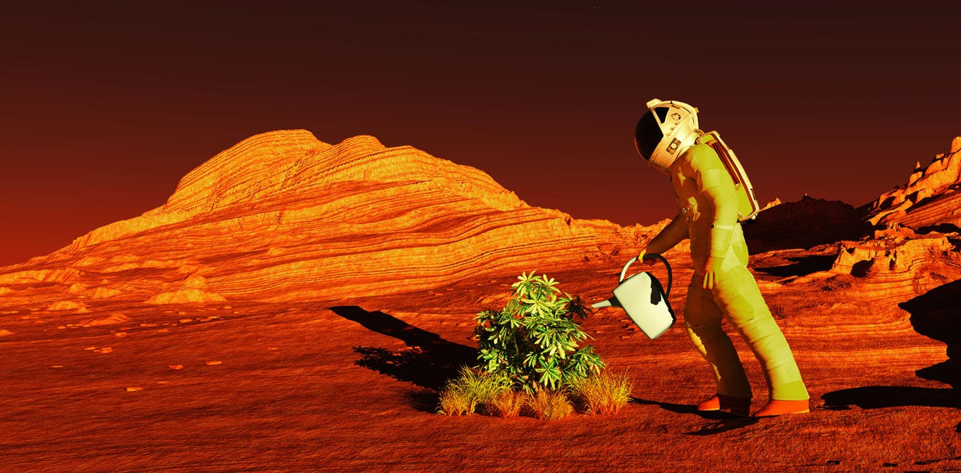 growing-crops-on-mars.jpg