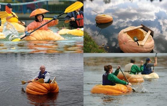 pumpkin_boat_race-tile.jpg