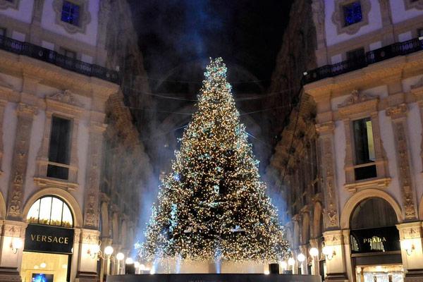 swarovski_christmas_tree_milan.jpg