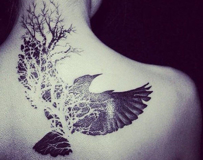 tree-birds_2048x2048.jpg
