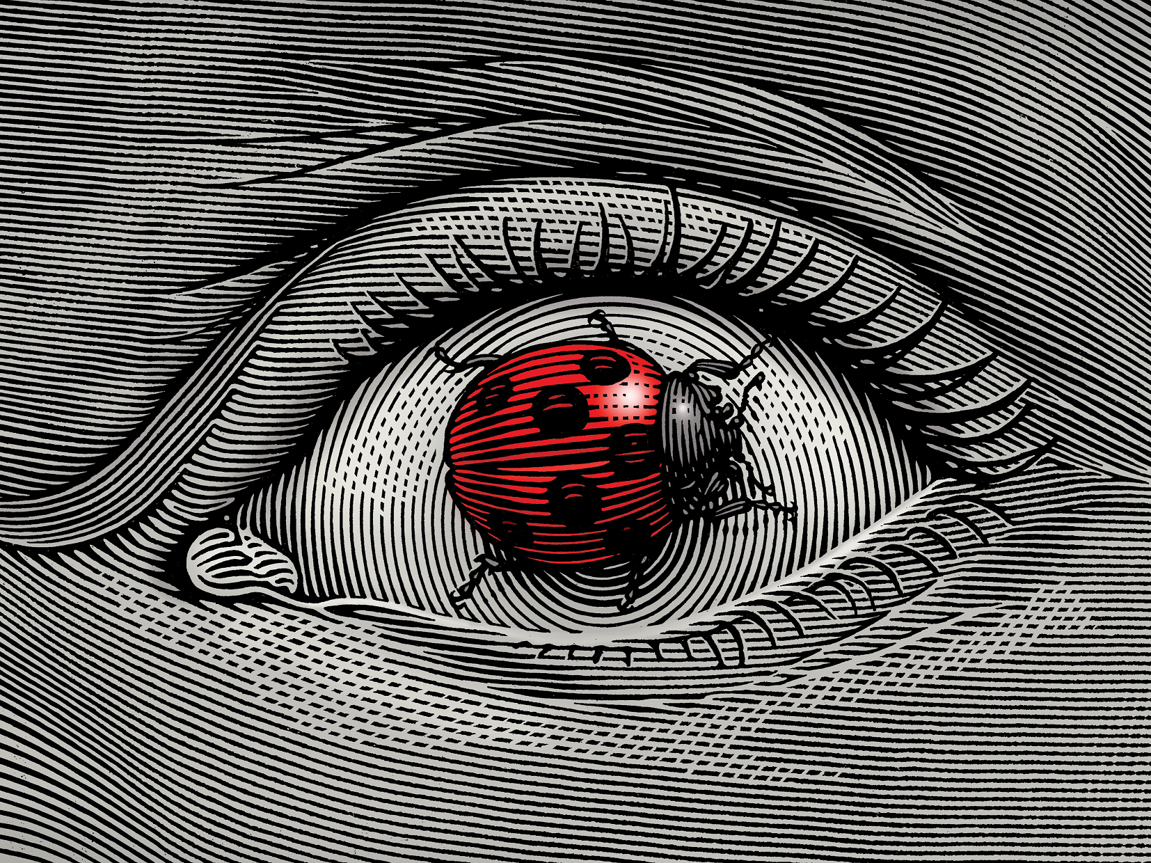 Orosz István: Eyebug