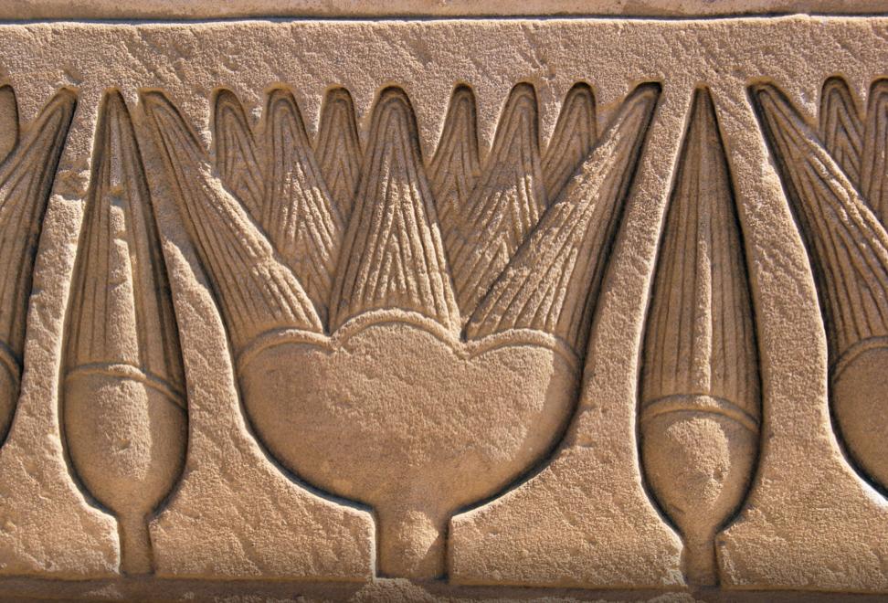 Lótuszok az ókori Egyiptomból