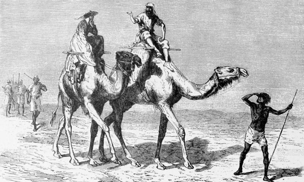 A 19. század a nagy felfedezések kora volt